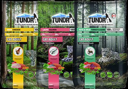 tundra_katze